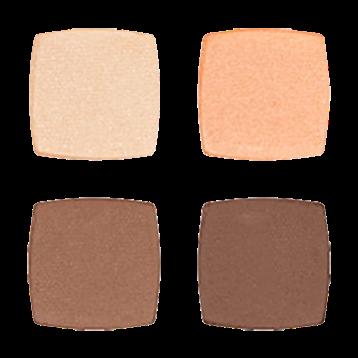 Absolute Minerals Devita Skin Care absolute EYES Quad Chocolate amp Vanilla D00967