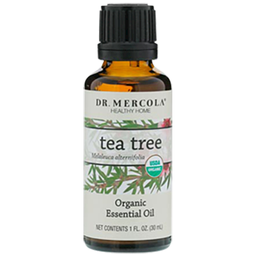 Dr. Mercola Organic Tea Tree Essential Oil 1 fl oz DM6575