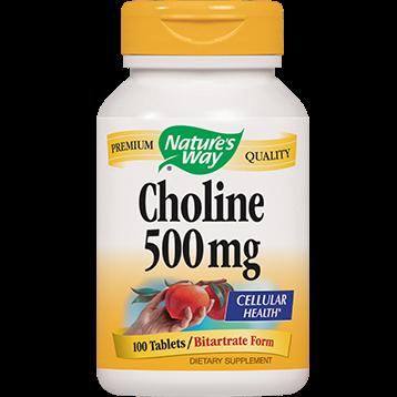 Natures Way Choline 500 mg 100 tabs CHOL3