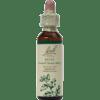 Nelson Bach Holly Flower Essence 20 ml HOLLY