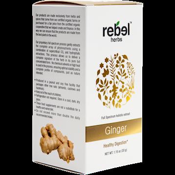 Rebel Herbs Ginger Powdered 1.15 oz RH4215