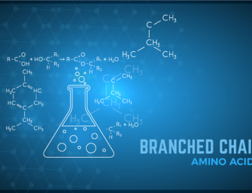 Branched-Chain Amino Acid (BCAA) Supplement Research and Use