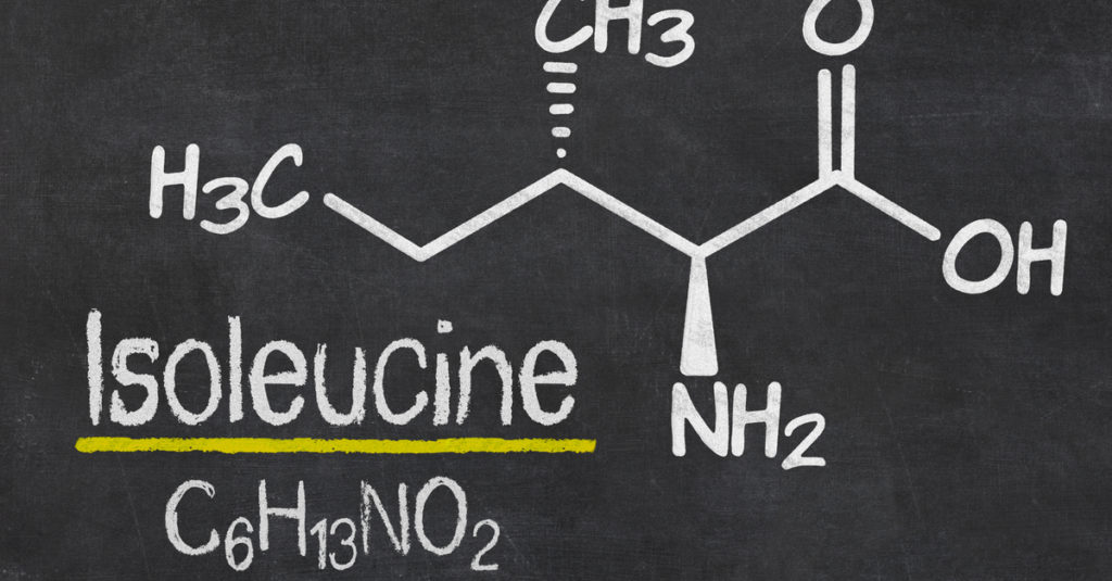 isoleucine for muscle mass